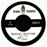 Singa Tempa / Douglas Wardrop - Musical Healings / Healing Dub
